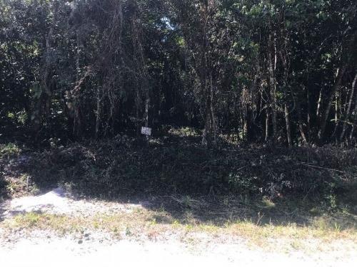 bom terreno com 415 m² a venda no litoral sul, itanhaém-sp!!