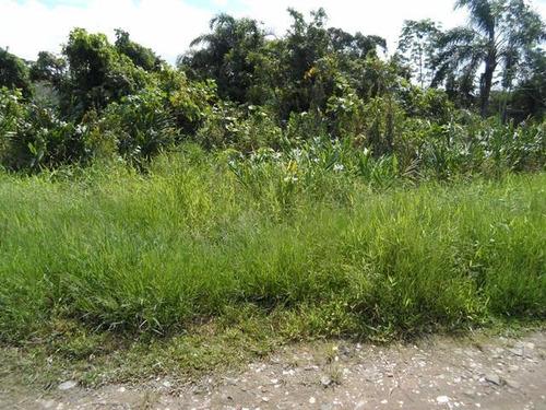 bom terreno com ótimo preço, no jardim palmeiras - ref 2789