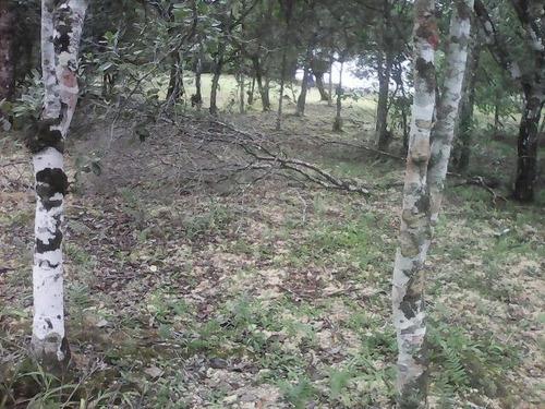 bom terreno de chácara no jardim são fernando - ref 3153