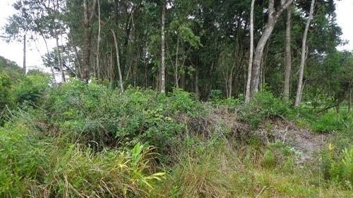 bom terreno de chácara no jardim são fernando - ref 3968