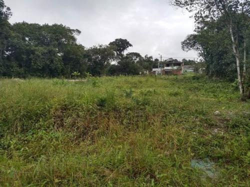 bom terreno escriturado no gaivota, em itanhaém - ref 4509