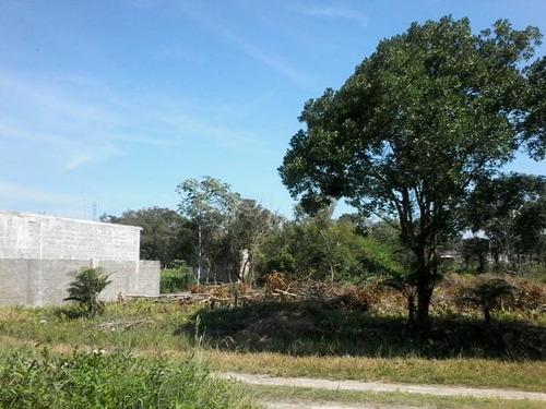 bom terreno no bairro luizamar mirim com 312m² - ref 4711
