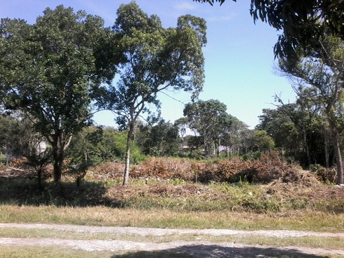 bom terreno no bairro luizamar mirim, em itanhaém - ref 4711