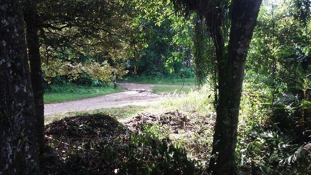 bom terreno no jardim coronel, em itanhaém