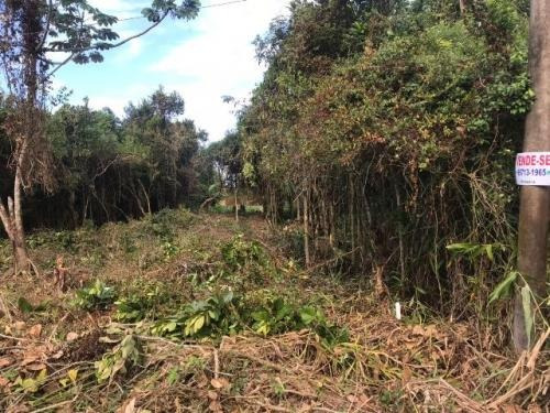 bom terreno no jardim das palmeiras, com 312 m², itanhaém-sp