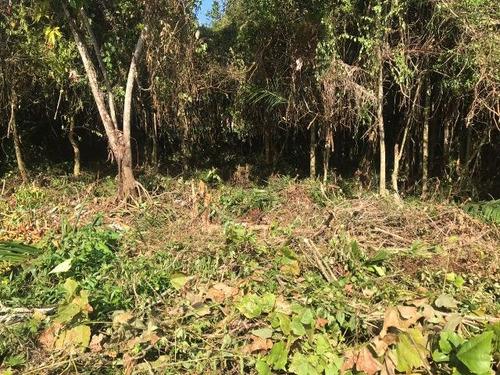 bom terreno no jardim das palmeiras, em itanhaém - ref 4165