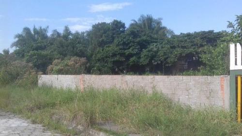 bom  terreno no jardim das palmeiras - ref 4215