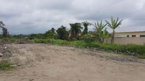 bom terreno no jardim itapel, em itanhaém sendo 355m² - 3814