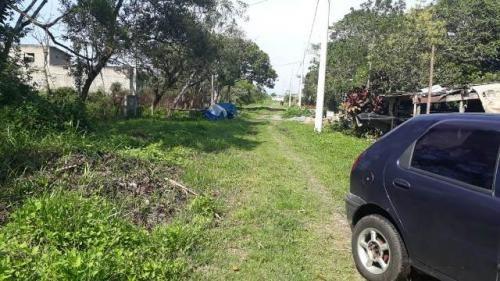 bom terreno no jardim palmeiras, em itanhaém - ref 4768