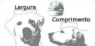 Bonés Para Cães Estampas Diversas - R  25 7087292f436