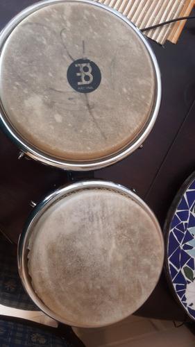 bongo meinl profesional