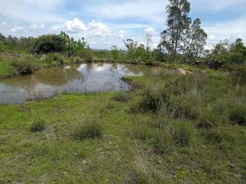 bonito terreno de una hectárea  en ceja de bravo huimilpan qro., luz, y agua