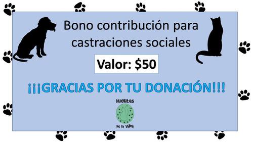 bono contribucion $50