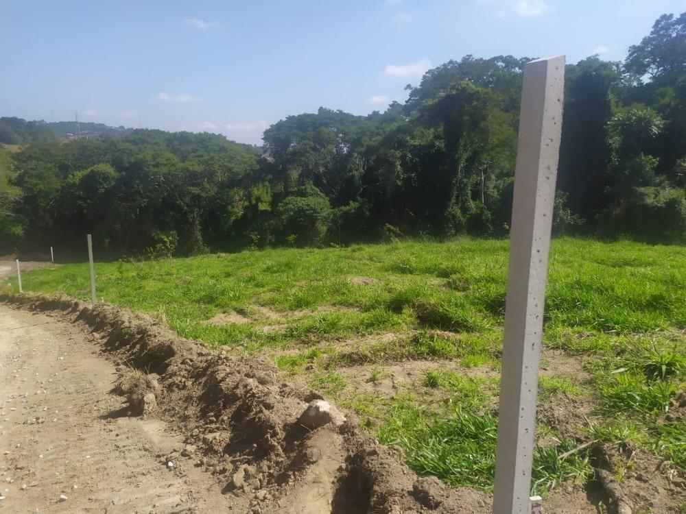 bons terrenos para plantio não perca essa oportunidade   pb