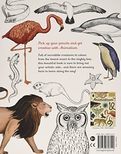 Animalium: Welcome to the Museum download