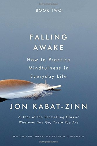 book : falling awake how to practice mindfulness in everyday