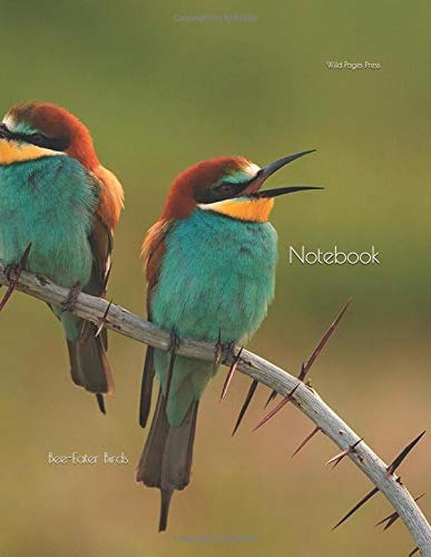 book : notebook bee-eater birds - wild pages press