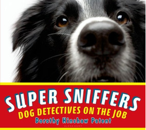 Headspace: Sniffer Dogs, Spy Bees and One Womans Adventures in the Surveillance Society