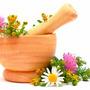 Pdf - Todo Sobre Plantas Medicinales Parte 1