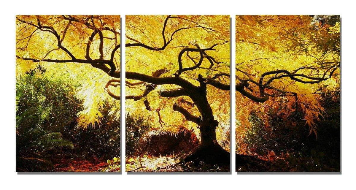 Boqi Art- Beautiful Maple Tree Canvas Prints 3 Panels Framed ...