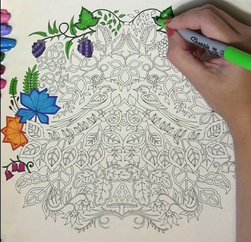 Moderno Libro De Colorear Candyland Elaboración - Enmarcado Para ...