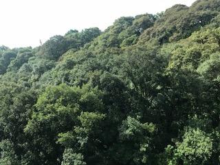bosques de las lomas, excelente depto con vistas increibles