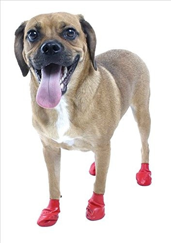 bota de perro pawz roja a prueba de agua, pequeña, hasta 2-1
