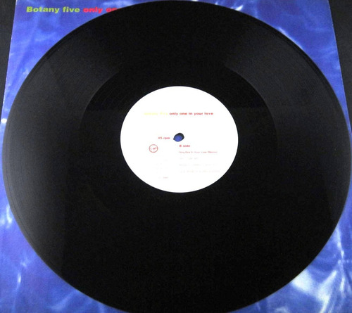 botany five - only one in your love single importado uk lp