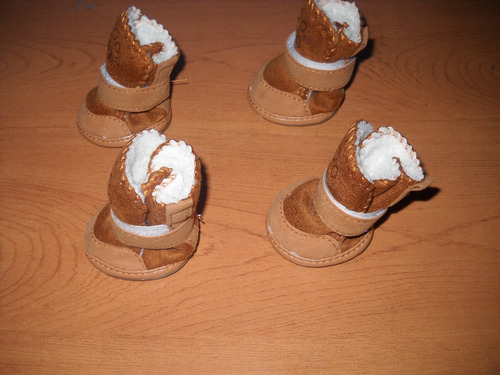 botas para perrito-gato