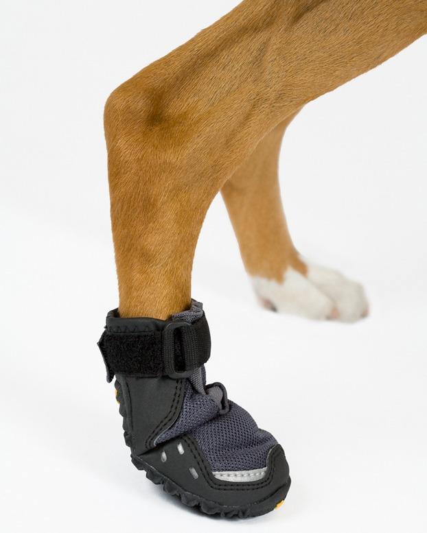botas para perros de rescate