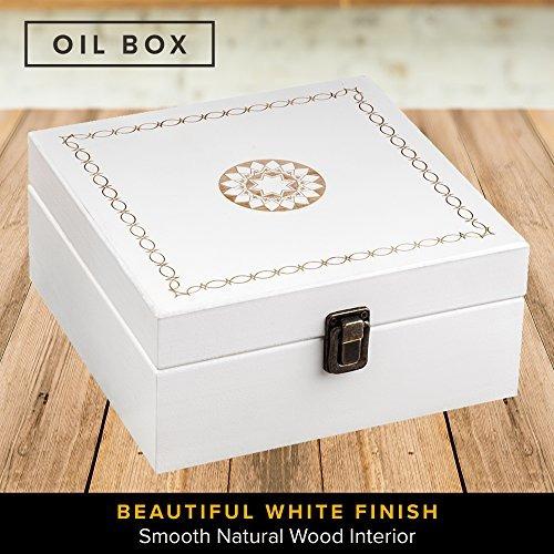 botella essential oil oil box 36 - sostiene 5-15ml - botella