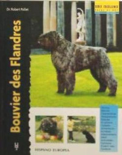 bouvier des flandres (excellence)(libro )