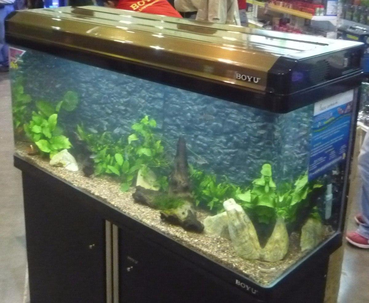 Boyu acuario ea120 agua dulce peces peceras 7 - Pecera de pared ...