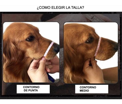 bozal muzzle cuero 3 hebillas para perro mascota bakanisimo
