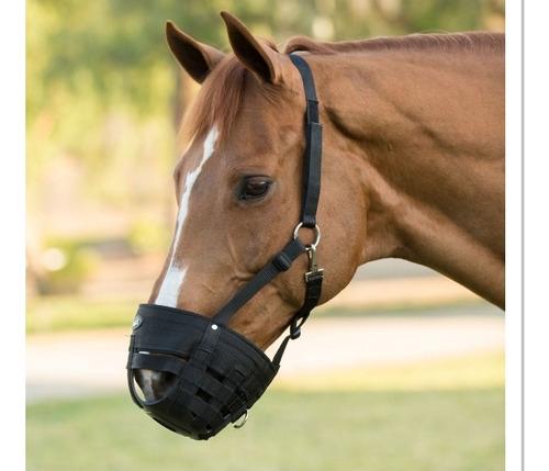 bozal para caballos, equinos