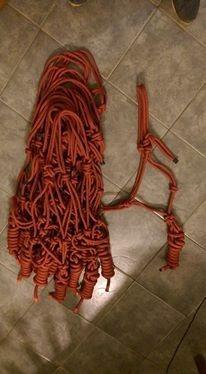 bozal soga con cabestro (rope halter)