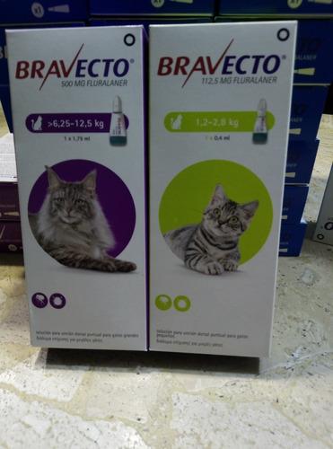 bravecto pipeta para gatos