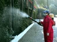brillado de pisos y servicios de fumigacion a&d 8093277880