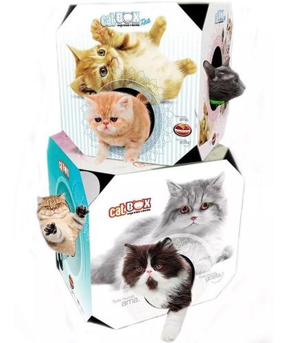 brinquedo cat box filhotes caixa de brincar - furacão pet