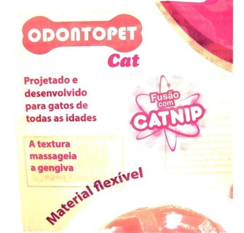brinquedo para gatos de todas as idades odonto cat minhoca com cat nip