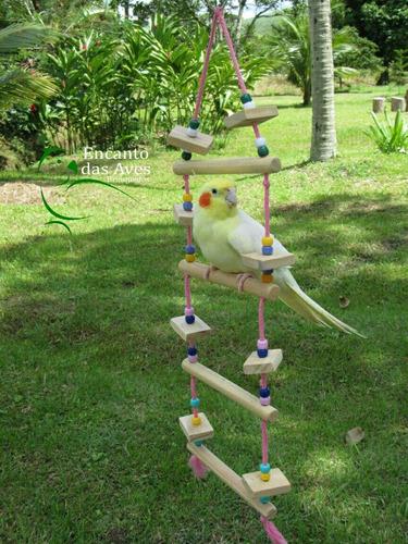 brinquedos aves aves brinquedos