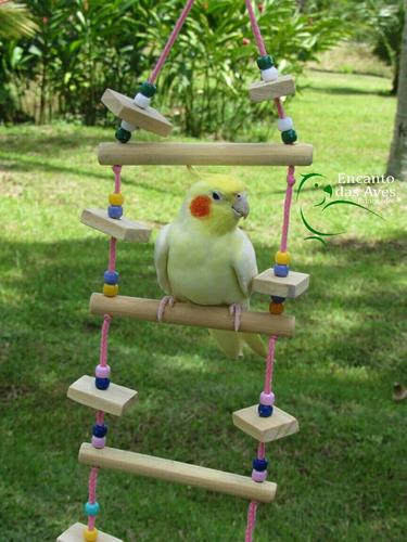 brinquedos para aves calopsita encanto das aves brinquedos