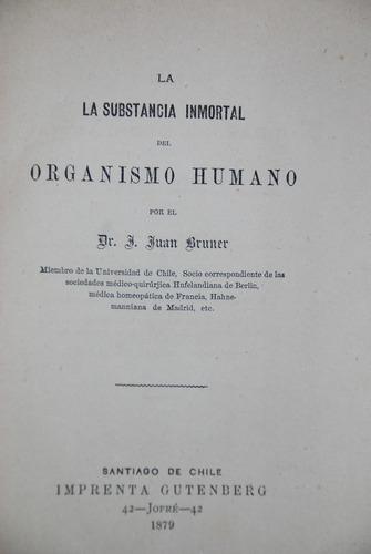 brunner anatomia organismo humano 1879