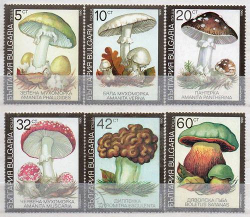 bulgária - cogumelos - 1991 - s/completa