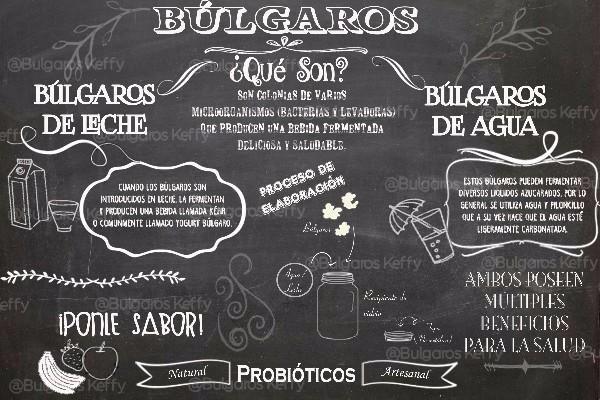 Bulgaros De Agua Tibicos Kefir Mas Regalo Guia De Uso 70 00 En