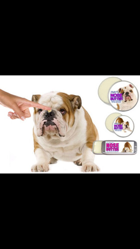 bulldog ingles crema humectante para las patas de tu mascota