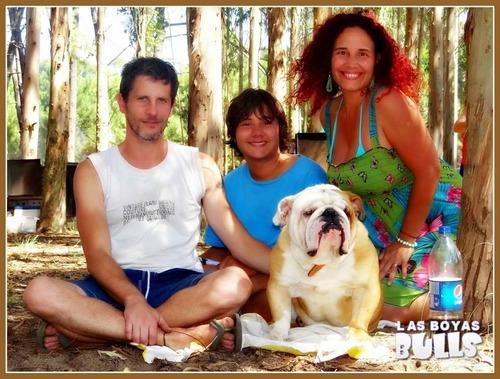 bulldog ingles en servicio pagalo con tarjeta...