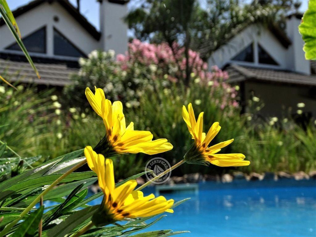 bungalows punta colorada de 4 a 7 personas en punta colorada