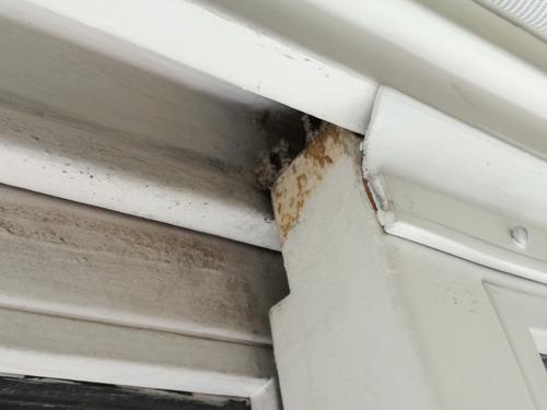 burletes para ventanas