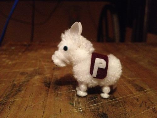 burro politécnico nacional estambre artesanía